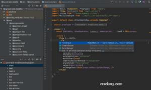 Webstorm 2019.3 Crack + License & Activation [Key   Code] Download Free!