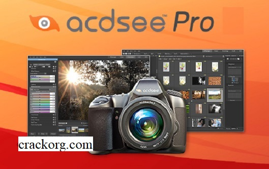 ACDSee Pro 2020 Crack + License Key (Mac) Latest Free Download