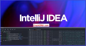 IntelliJ IDEA 2020.3 Crack Download | Pro Version Free 2021